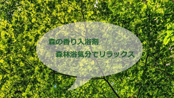 【森の香り入浴剤】森林浴気分?バスタイムのリラック効果におすすめ